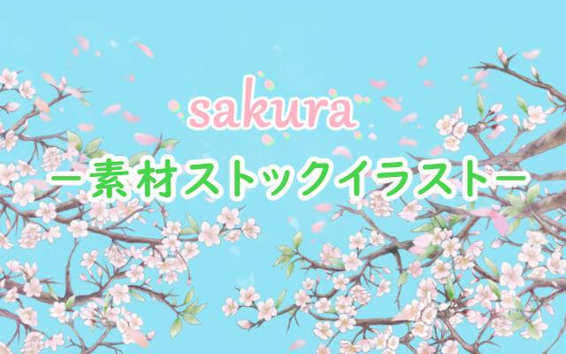 sakura_illustration